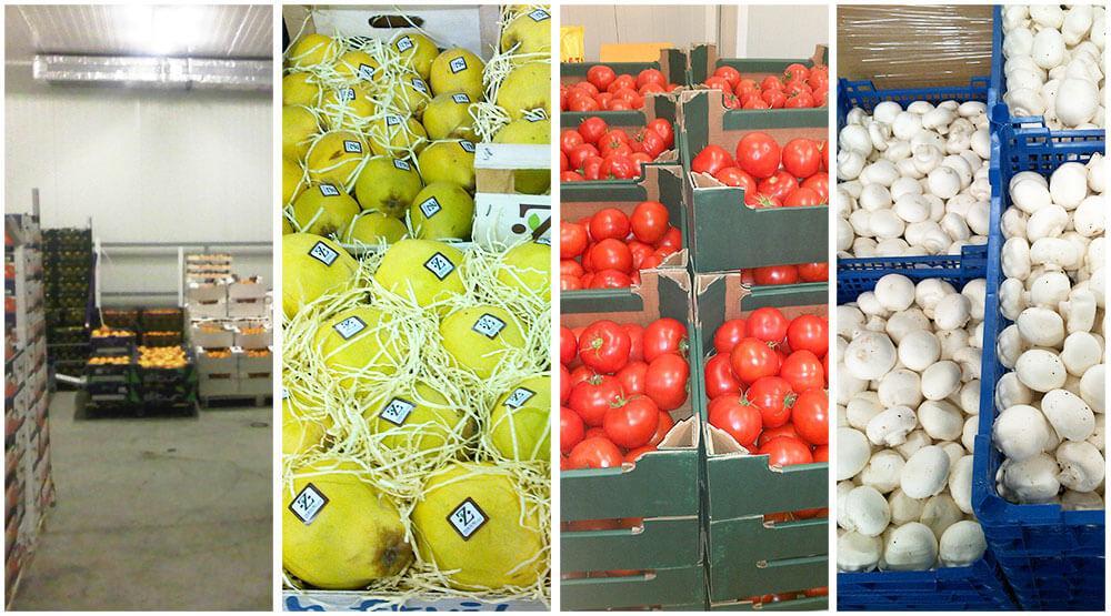 Хладилно съхранение на свежи плодове и зеленчуци