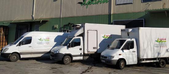 Какво трябва да знаете за доставките с хладилни бусове? - Натурални Храни ООД